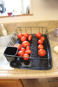 Tomatoes after blanching