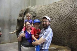 Fedibbletys in front of an elephant