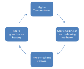 Diagram of the methane release amplifying feedback loop