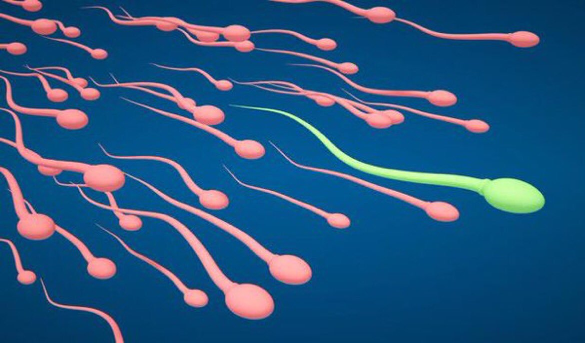 sperm count sperm, lime, benefits of lime, height increase , height