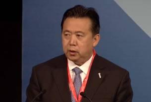 Meng Hongwei, interpol chief missing, World News