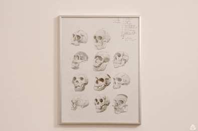 Ant generated future – Ștefan Ungureanu @ H'art Gallery