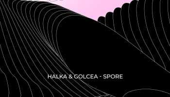 Halka & Golcea - Spore [artwork]