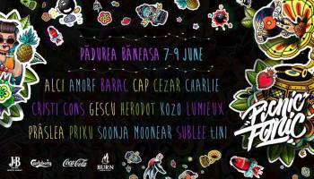 Picnic Fonic Festival 2019
