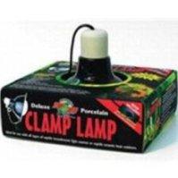 Leopard Gecko Care Sheet - Feeder Factory