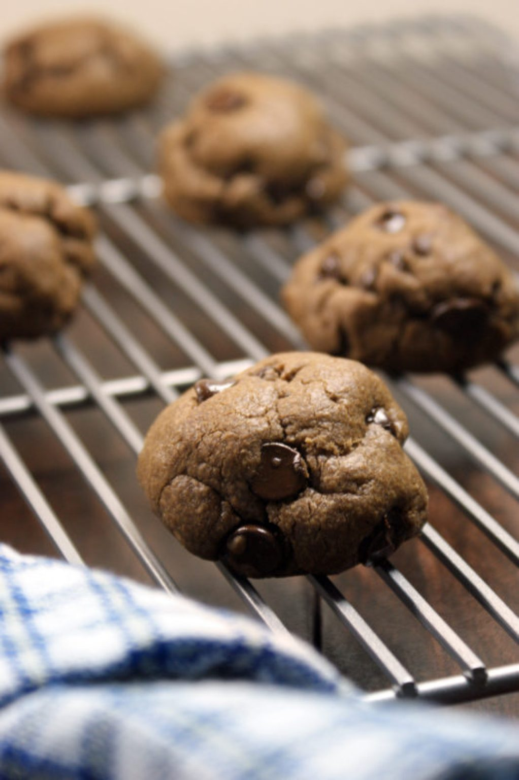 double chocolate pb cookies