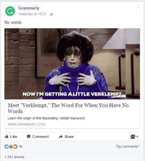 grammarly-internet-meme