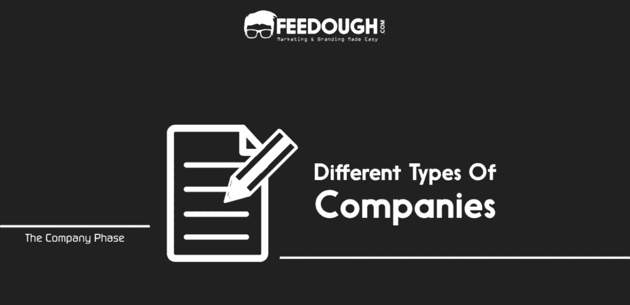 Types of Companies | The Startup Process | Feedough
