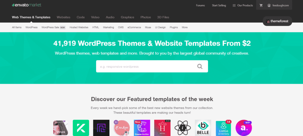 theme forest website hosting development