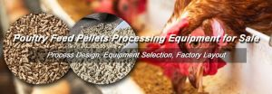 HOW TO START A SMALL SCALE POULTRY FEED MANUFACTURING BUSINESS