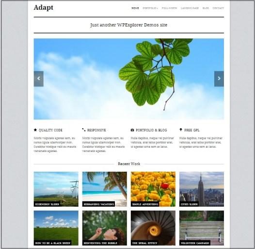 Adapt wordpress theme