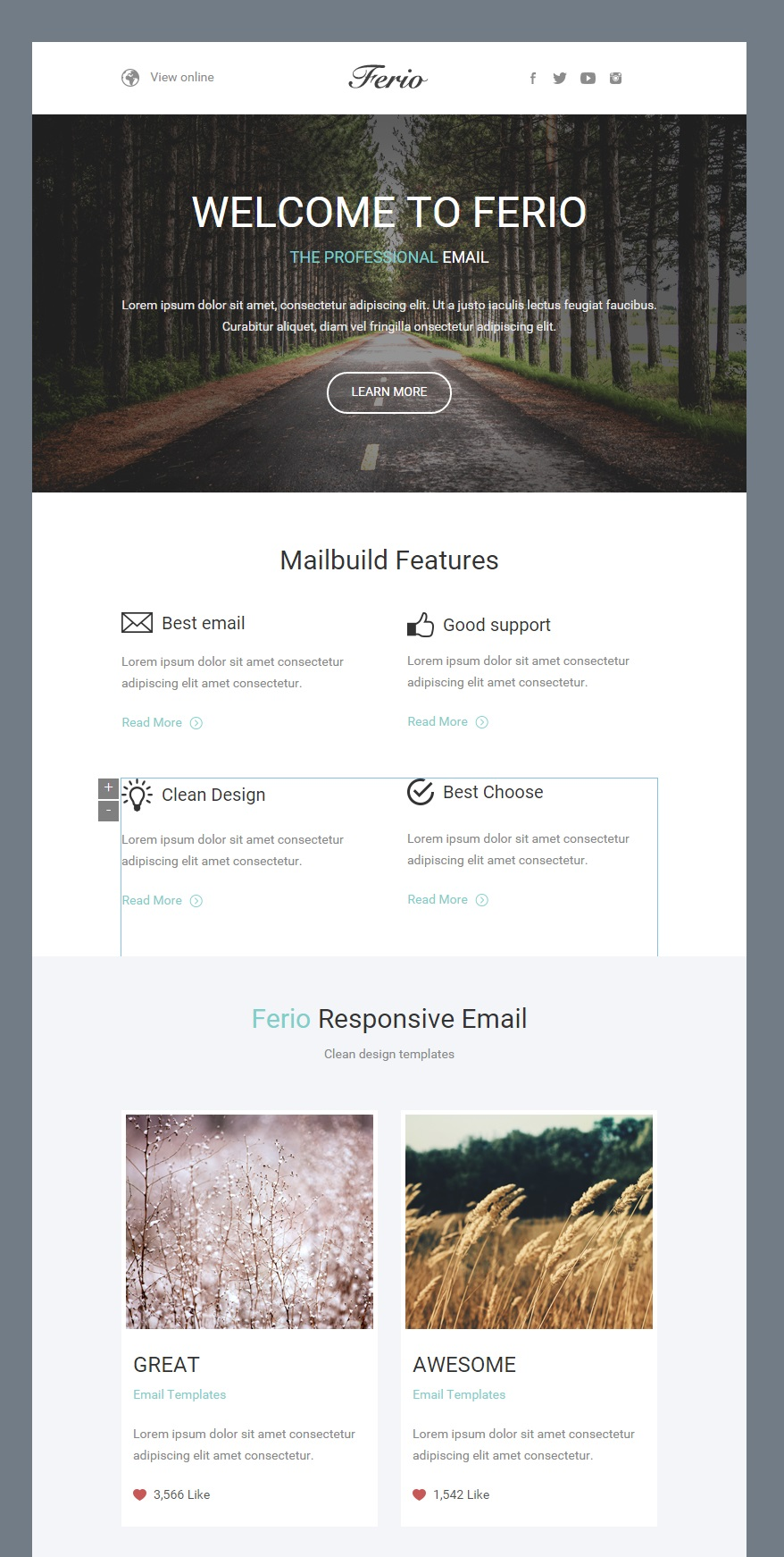 Ferio responsive email template