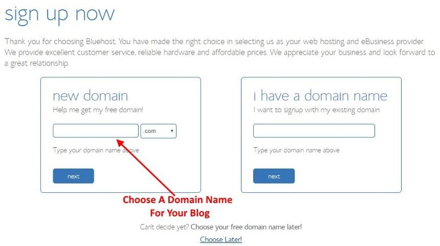 Bluehost Domain Registration Page