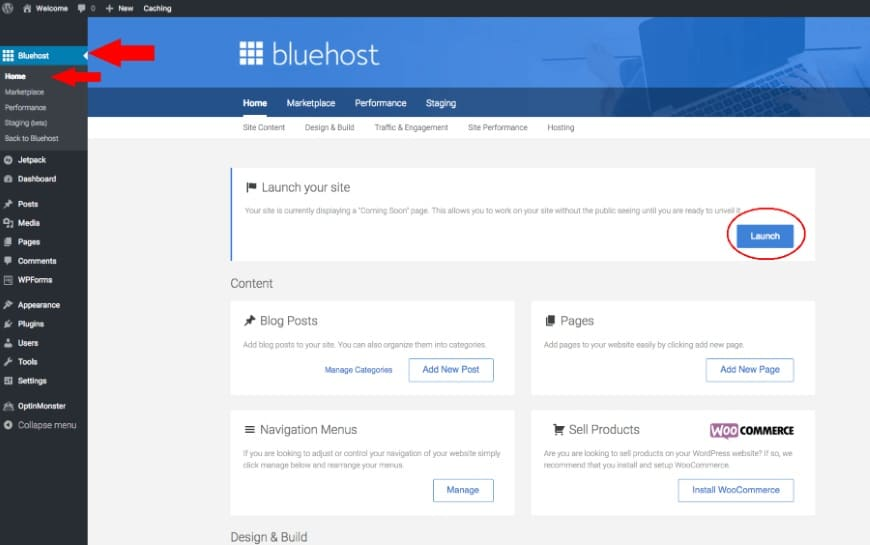 Bluehost Launch Your Site