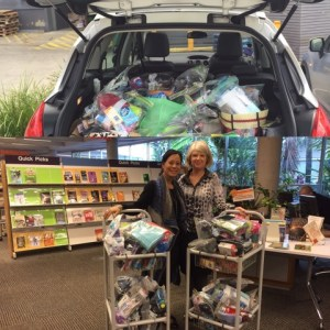 This is an image of the collection of Winter Care Kits at Mona Vale library