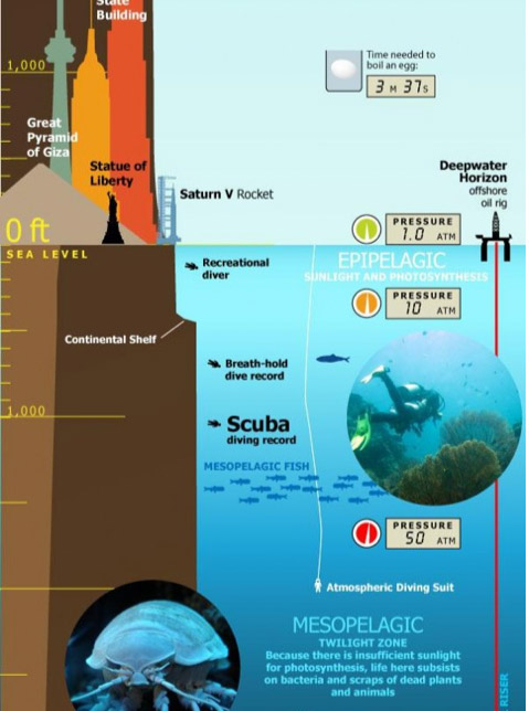 INFOGRAPHIC OF THE DAY Tallest Mountain to Deepest Ocean