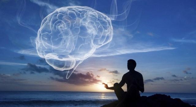 BrainHarvardMeditation