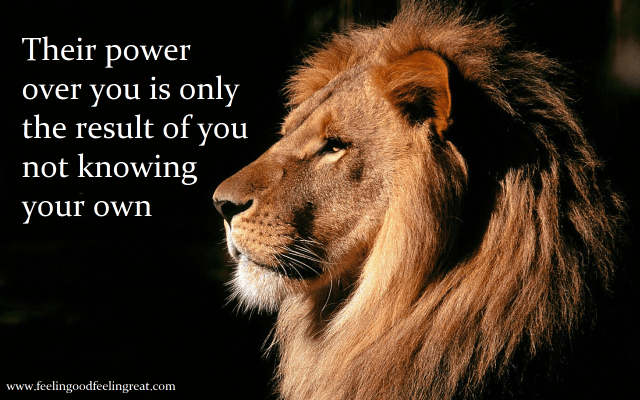 Lion Power