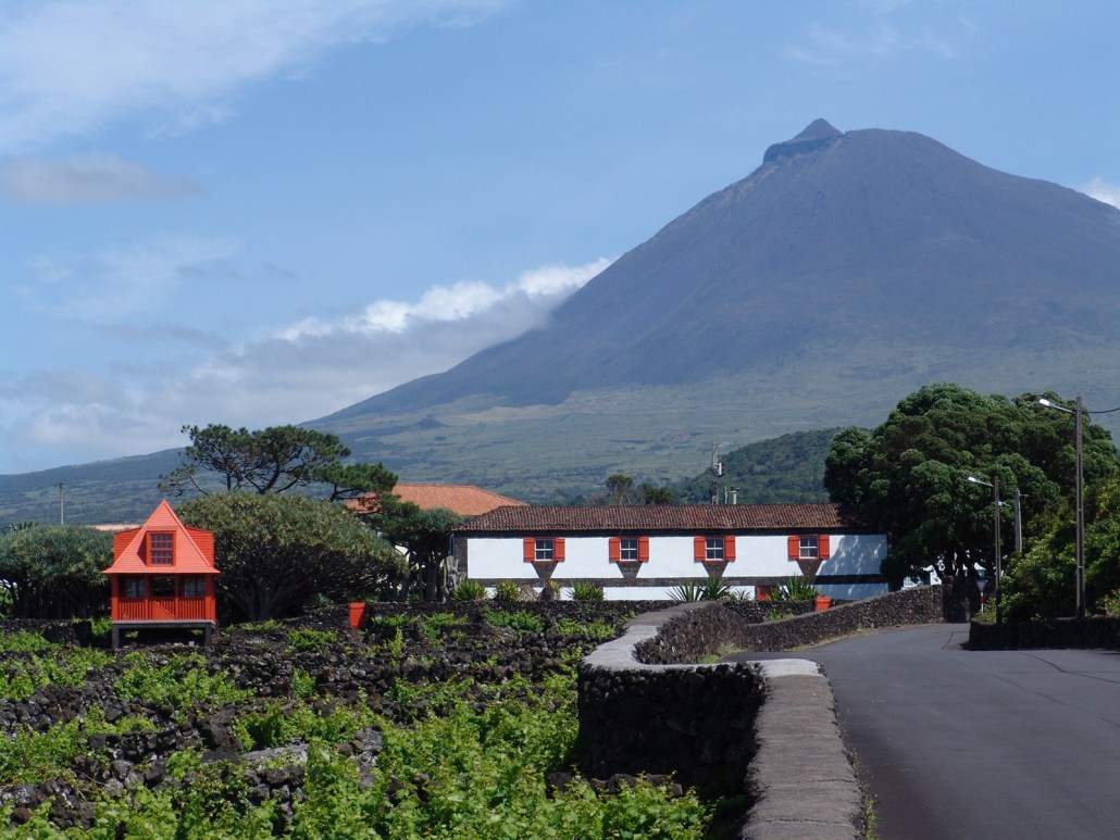 Museu do Vinho – Ilha do Pico