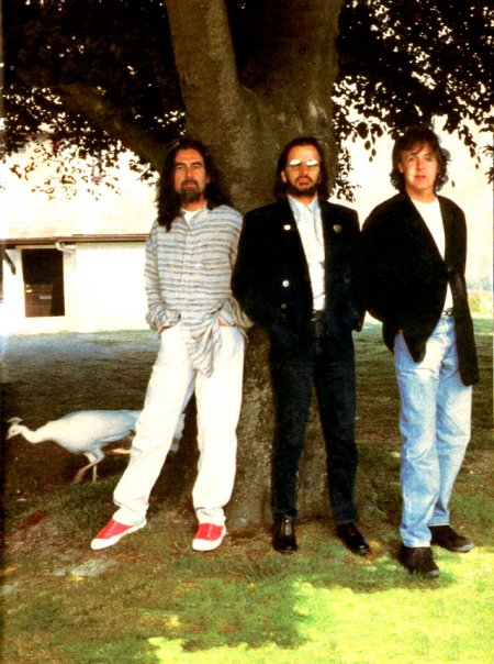 Image result for beatles free as a bird