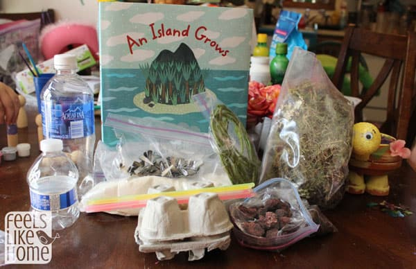 Volcanic Island Craft - Materials