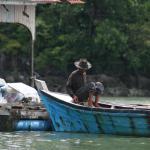 Langkawi: Kilim Ecopark mangrove tour