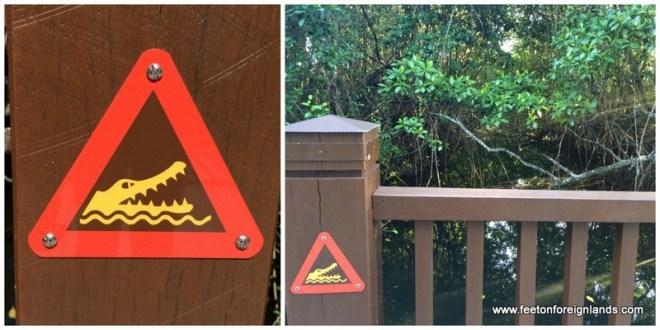 Crocodile warnings
