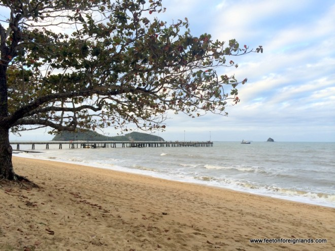 palm cove jetty