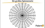 Ein großes Spinnennetz