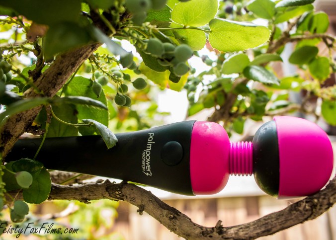 """The PalmPower Recharge, balacing in a tree. The pink silicone head is pointing to the right and the small handle is on the left, the words """"PalmPower Recharge"""" and the on/off button both clearly visible."""