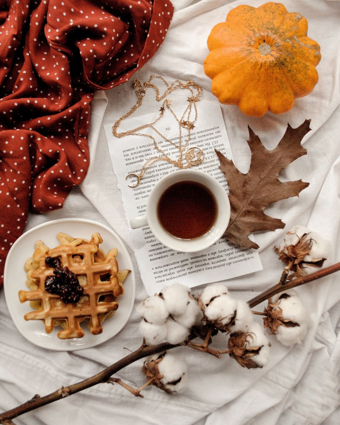 Feisty Life Media\'s editorial theme for November is comfy-cozy. Stay tuned for posts on #hygeelife, easy comfort food, and more! #feistylifemedia