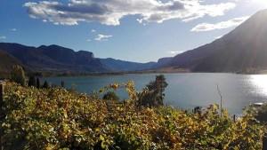 Herbst am Kalterer See