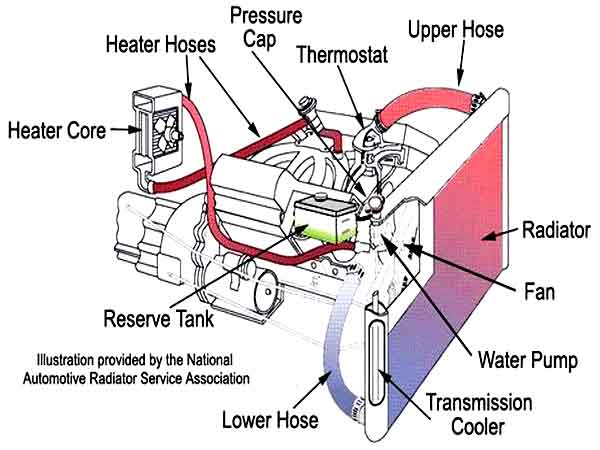 Car Cooling System >> Automotive Cooling System Overheating St Augustine Fl