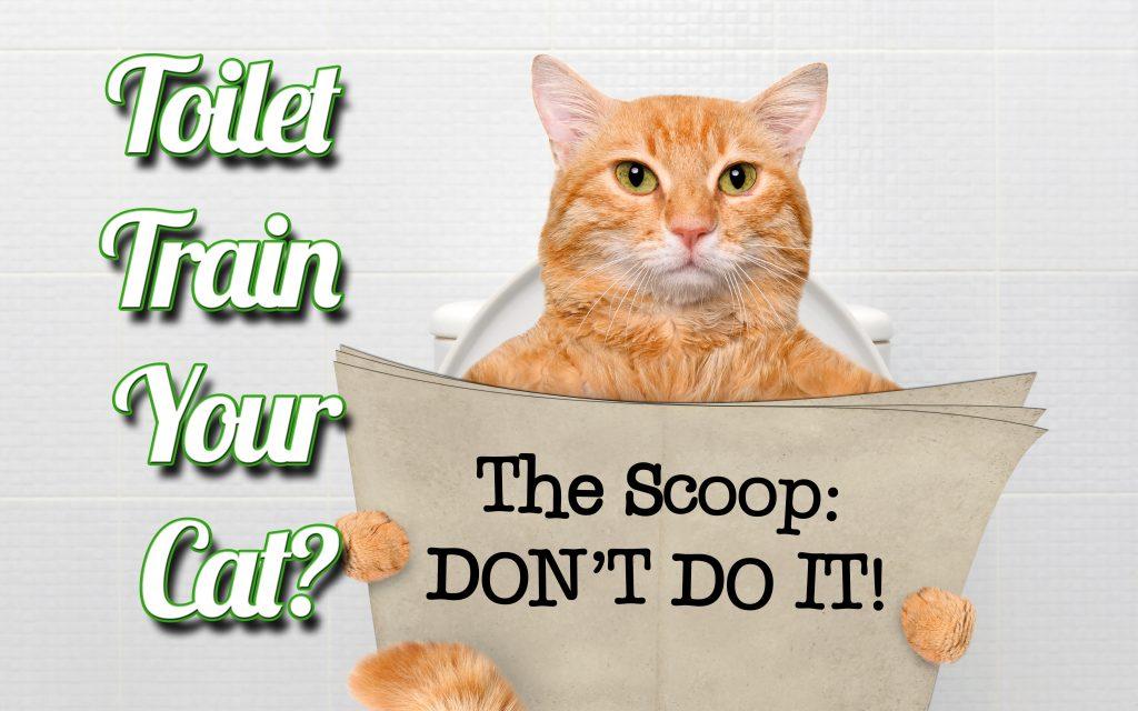 Don't Toilet Train Your Cat