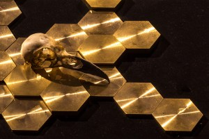detail view: Currencies of Absence Medium: Brass, found material. Size: Dimensions variable. Year: 2016