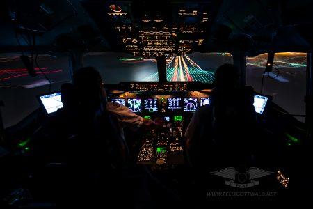 LufthansaCargo_MD11_D-ALCM_FRA-SHJ_2014-05-14_01cr