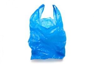 Horrid bag
