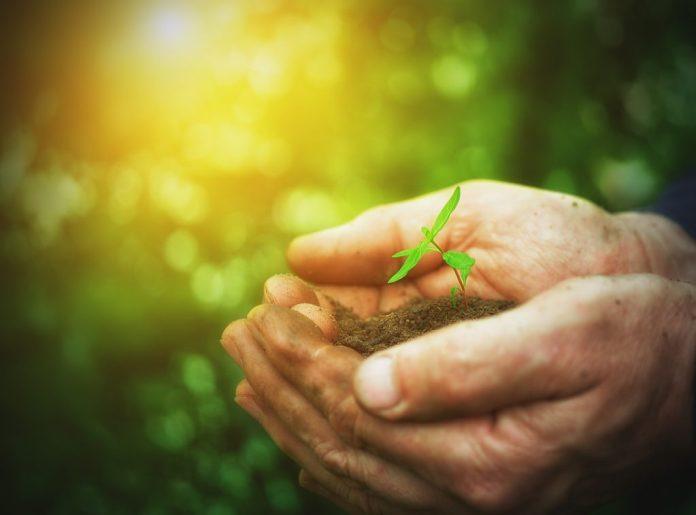 A espiritualidade e a terceira idade