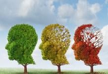Alzheimer O que eu preciso saber