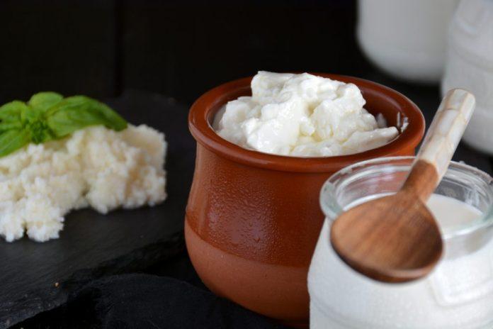 Kefir: Superiogurte para produzir na sua casa