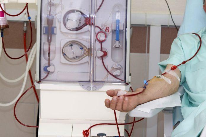 Conheça o Rim Biônico – O fim da hemodiálise