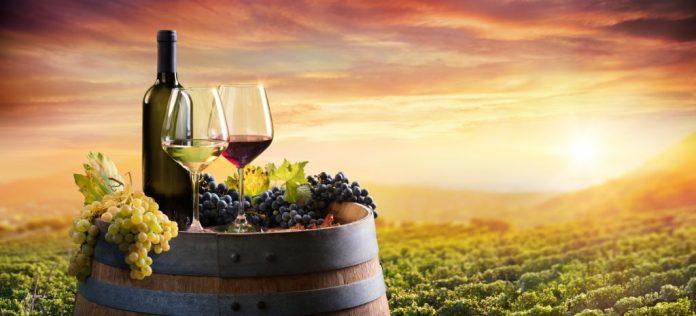 São Roque SP – Roteiro de vinícolas e muito mais