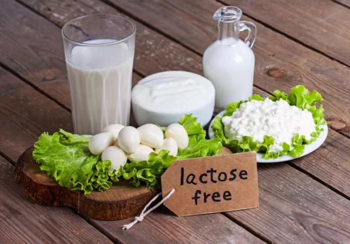 Produtos sem lactose ou com baixo teor de lactose - Lista