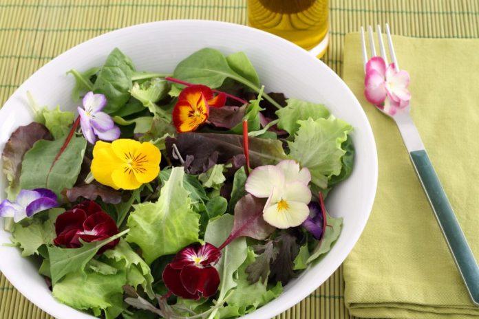 4 tipos de flores comestíveis nutritivas