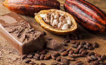 Como é feito o chocolate - Cacau
