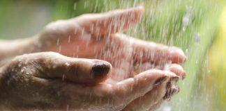 Alimentos úteis para hidratação da pele