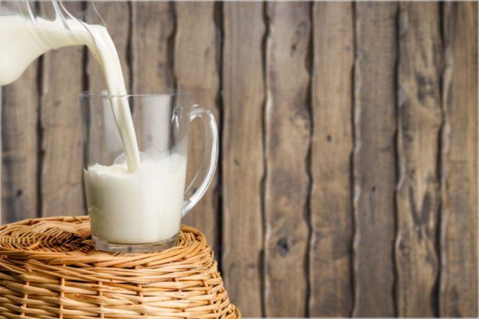 4 tipos de leite para substituir o de vaca