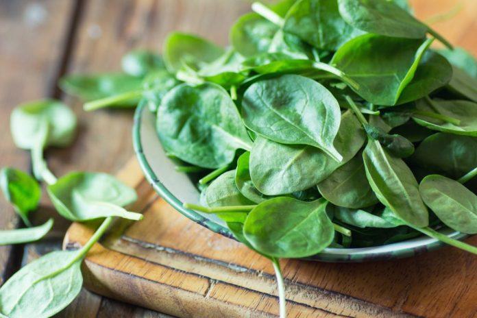 Espinafre – 11 benefícios importantes