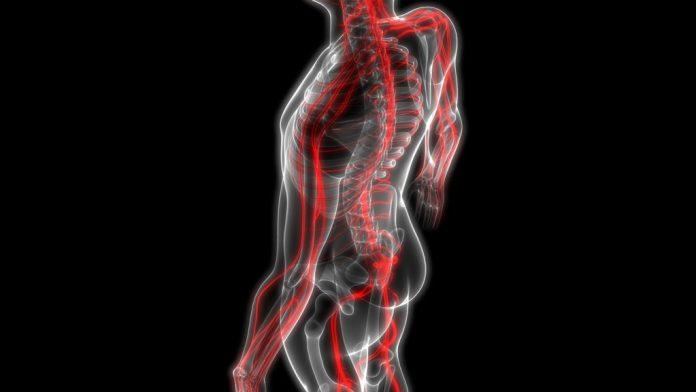 Síndrome de Guillain Barré: causas, sintomas e tratamento