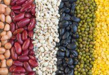 6 tipos de feijão mais conhecidos e seus benefícios
